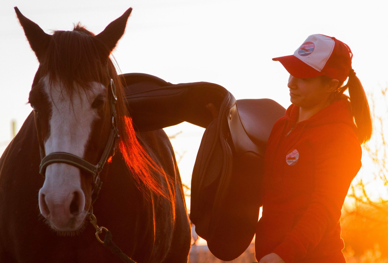 ilaria saddle service saddle fitting