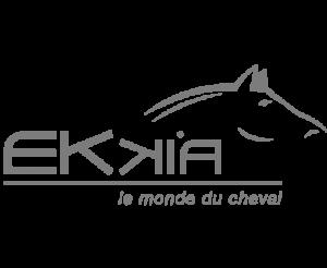 ekkia-logo