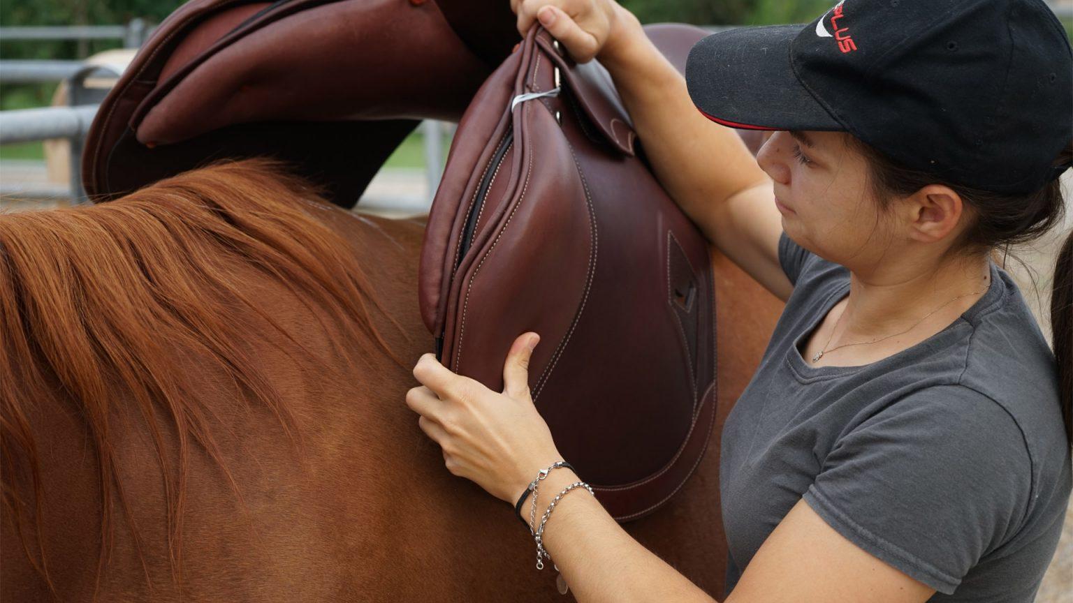 saddle fitting selle su misura